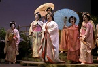 Madame Butterfly & Geishas