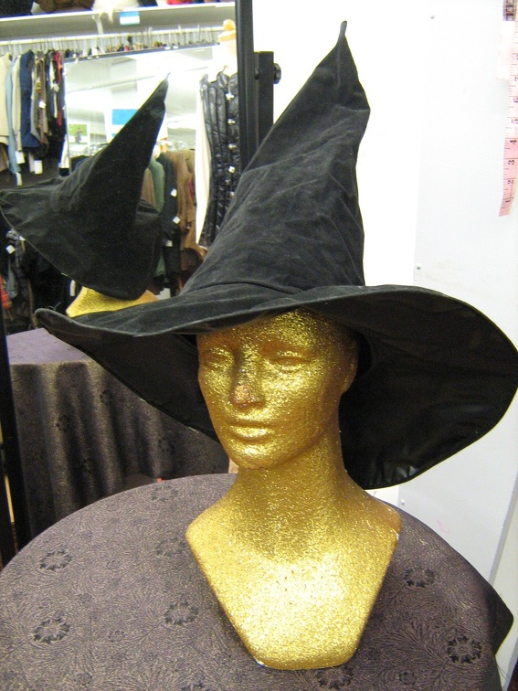 Wizard or Witch hat.jpg