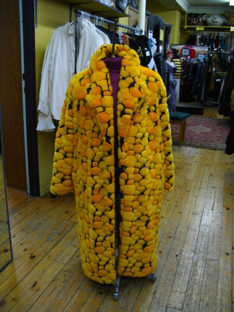 Pimp Coat yellow.JPG