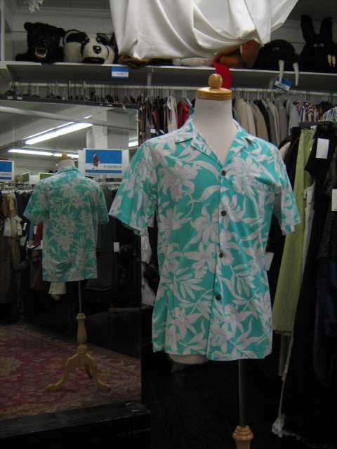 Hawaiian shirt aqua.jpg