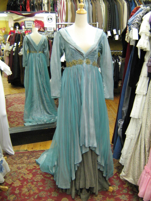 Dress Medieval Sleeping Beauty.jpg